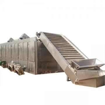 Big capacity Continuous mesh belt hot air hemp biomass dryer for CBD oil