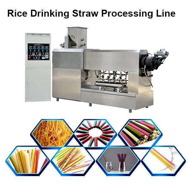 ECO Friendly Biodegradable Electric Drinking Straw Kids Straws Making Machines #1 image