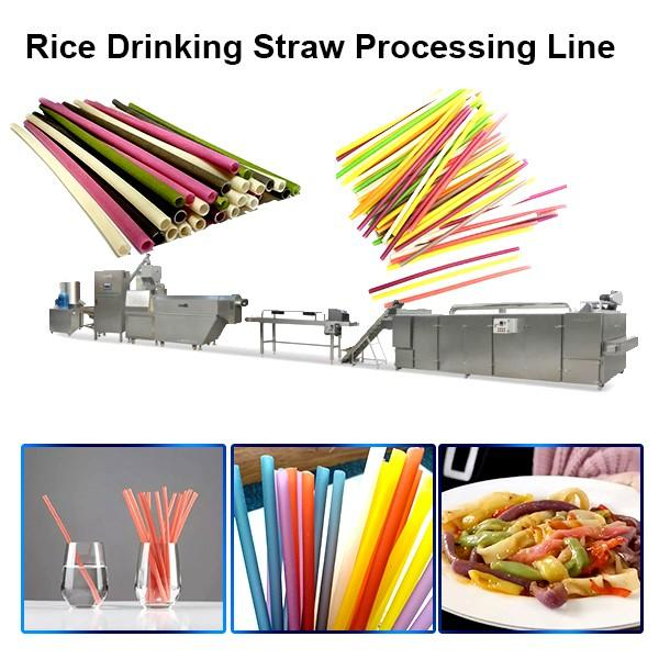 Edible Eco Friendly 100-150kg/H Best Quality Rice Making Drinking Straw Machine Pasta Straw Extruder #1 image