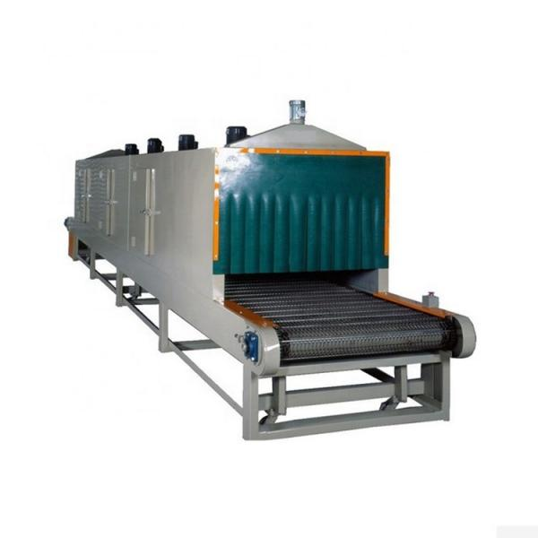 high-efficience dryer machine for Agricultural Byproduct /conveyor mesh belt dryer #1 image