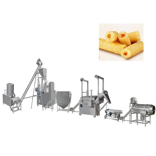 Snacks Food Machine Double Screw Extruder (LT70L) #1 image